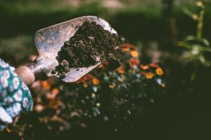 Small shovel with soil on digging up a garden